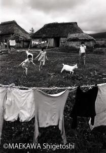 若草の上で仔山羊と戯むる